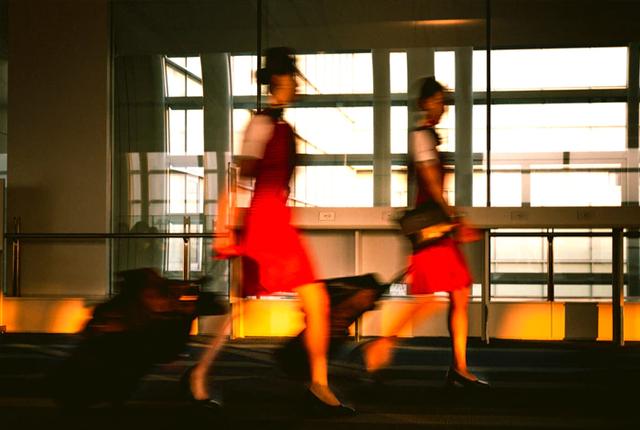 praca stewardessy