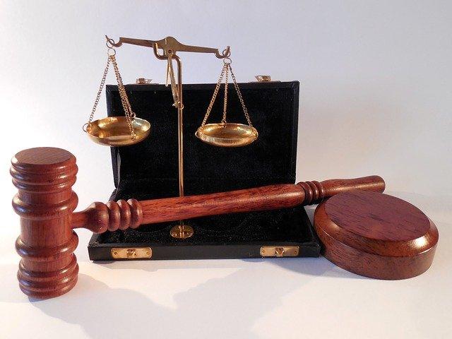 sędzia studia