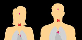 endokrynolog opis zawodu