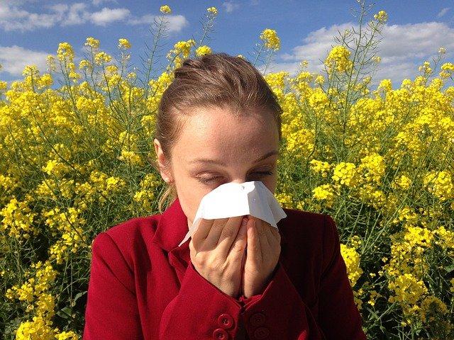alergolog zawód